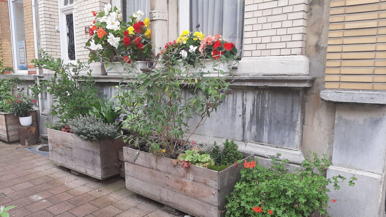 Plantenbakken voor gevel